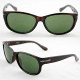 Woman (91081)のための分極されたQuality Designer Demi Fashion Sunglasses