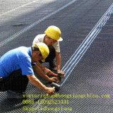 Protección de la pared Dimple Mat para proyectos de construcción