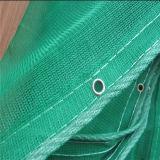 Зеленым сеть безопасности конструкции лесов связанная HDPE