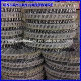 15 Spijker Van gehard staal van de Rol van het Blad van de graad de Gegalvaniseerde Plastic voor Spijker Gailer