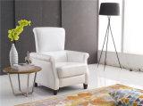 余暇のイタリアの革ソファーの家具(775)