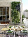 Piante artificiali di alta qualità della parete verde Gu-Wall360360