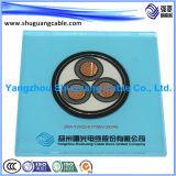 Multi-Cores 26/35kv isolation en polyéthylène réticulé de bandes en acier gainé PVC blindés de câble d'alimentation