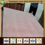 Packing Decoration Furniture Grade Plywood 18mm