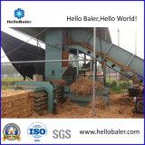 Съемный Semi-Автоматический гидровлический горизонтальный Baler сторновки (HMST3-3)