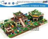 Grande Indoor Playground para crianças (H14-00721)