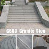 Granit gris et flammé tuile poli pour revêtement mural et le plancher