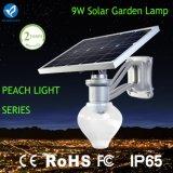 Indicatore luminoso solare del giardino del sensore di movimento con 6 watt LED