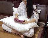빛 2-4cm 거위 기털 충분한 양 베개 순수한 성격 안락 베개 도매