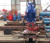 Motore vuoto verticale standard 8602131257197 della pompa di VHS dell'asta cilindrica del NEMA Vhs180-2-4