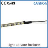 muestra de la luz de tira de 24V 2835SMD LED