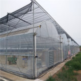 Plastic Film Green Competitive House with High Quality Pirce