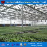 ポリカーボネートの温室のHydroponicsシステムが付いている農業の温室の溝