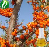 Softgelのための純粋なSeabuckthornの種油