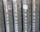 牧草地の農場のための塀によってファイルされる金網