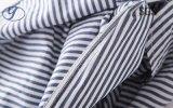 해군 여자 셔츠 7 소매