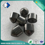 Dígito binario de botón de la forma cónica del carburo de tungsteno del surtidor de la tapa 10 de China