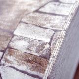 PPGI motif de briques d'acier galvanisé prélaqué bobine pour façade extérieure de bâtiment