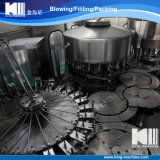 Pianta pura del sistema di trattamento di acqua minerale del RO