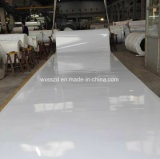 최상 산업 백색 PU 과일 컨베이어 벨트