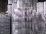 Treillis soudés en acier galvanisé à bon marché pour la Clôture