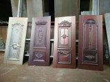 ステンレス鋼が付いているドアの皮