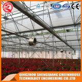 200 microns commerciale serre plastique pour la plantation de fleurs roses/