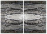 Jade Zebra losas de mármol, azulejos y suelos de mármol&Albañilería