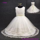 O vestido novo das meninas de flor da chegada com 3D floresce o vestido de partido moderno do estilo