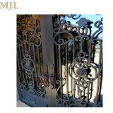 緩和されたガラスが付いている外部のアーチ形にされた錬鉄の出入口