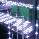 ライトボックスのための高い明るさLEDの側光の堅いライト