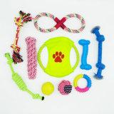 Brinquedo interativo do animal de estimação da mastigação ajustada de 10 blocos para o gato do cão