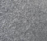 Granito e marmo di bianco cinese per i controsoffitti e le mattonelle