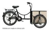 Трицикл груза семьи цикла миниой алюминиевой тележки коробки электрический