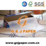 Diferentes tipos de papel resistente a la grasa blanca blanqueada de aceite para envolver alimentos