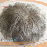 Cabelo grisalho Full Lace homens Toupee Hairpiece (PPG-L-0173)