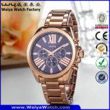 Venta caliente ODM de cuarzo de aleación de Casual señoras reloj de pulsera (Wy-106B)