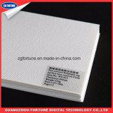 De la alta calidad de la superficie superior del papel pintado papel de empapelar solvente de Eco del paño de Wonven no