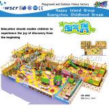 Innenspielplatz-Fabrik-Preis-Spielplatz-Kind-Spielplatz (H14-0916)