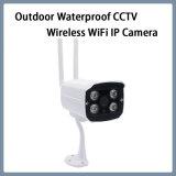 Im Freien wasserdichte CCTV-Netz IP-Kamera mit drahtlosem WiFi inländischem Wertpapier