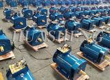 3~75kw de synchrone Dynamo van de Generator van de Alternator van de Borstel Elektrische Industriële