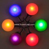 Beständige Haustier Identifikation-Hundenamensmarke der Qualitätsnacht beleuchtete LED