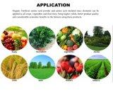 Chelato organico dell'amminoacido del boro per il fertilizzante di agricoltura