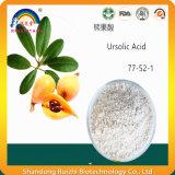 Acide 98% d'Ursolic d'extrait de lame de Loquat
