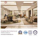 Mobilia dell'hotel con per sala da pranzo con la presidenza fragile (CY12-28)