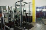 Ginnastica calda Fitnesse commerciale Quipment di vendita della macchina Tz-6017/2015 dello Smith