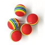La fuente del animal doméstico juega la bola de goma colorida del arco iris del tenis del juguete del perro