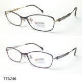 Het Optische Frame van uitstekende kwaliteit van het Titanium van het Metaal voor Mensen (TT 6246)