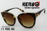 Óculos de sol plásticos Kp70235 do gato da forma
