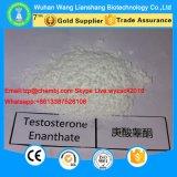 Qualitäts-Testosteron Enanthate Steroid-Puder für Bodybuilding CAS 315-17-7